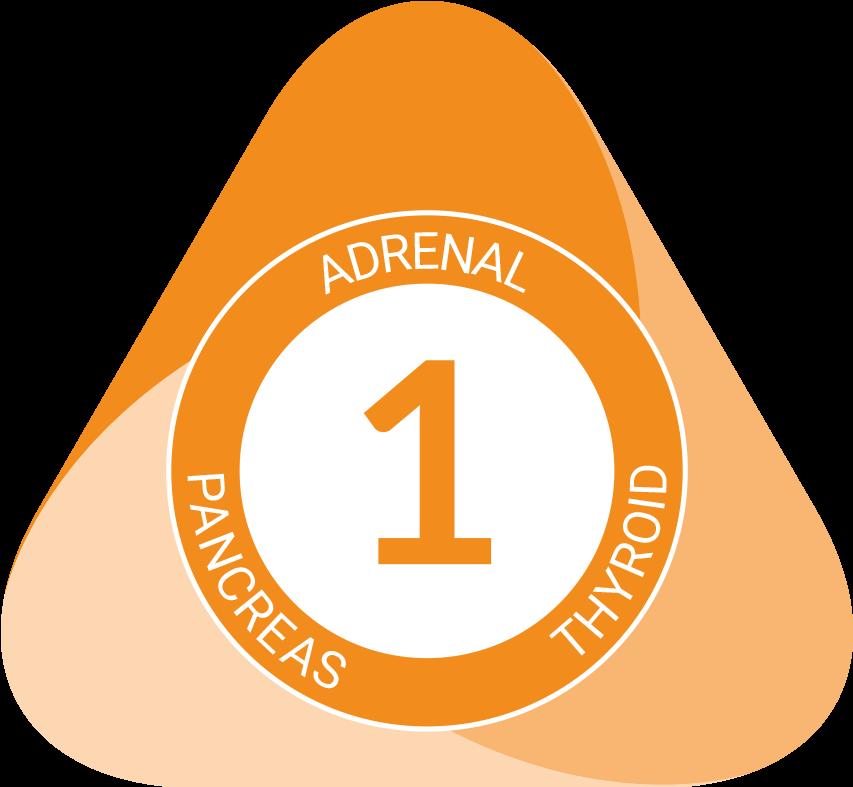 Triad-1